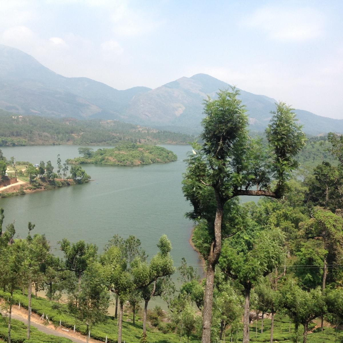 viaggio india racconti fotografie immagini (13)