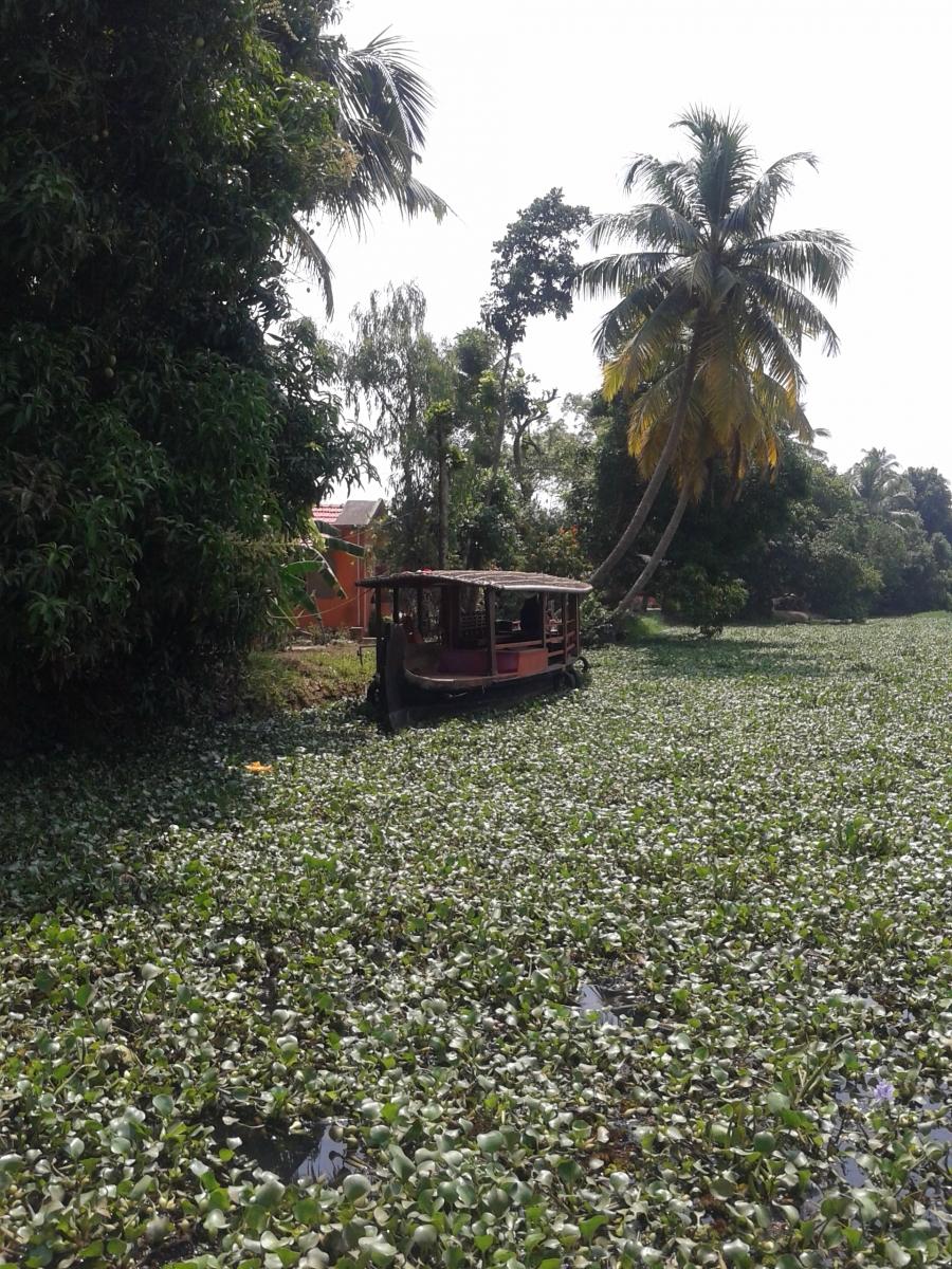 viaggio india racconti fotografie immagini (14)