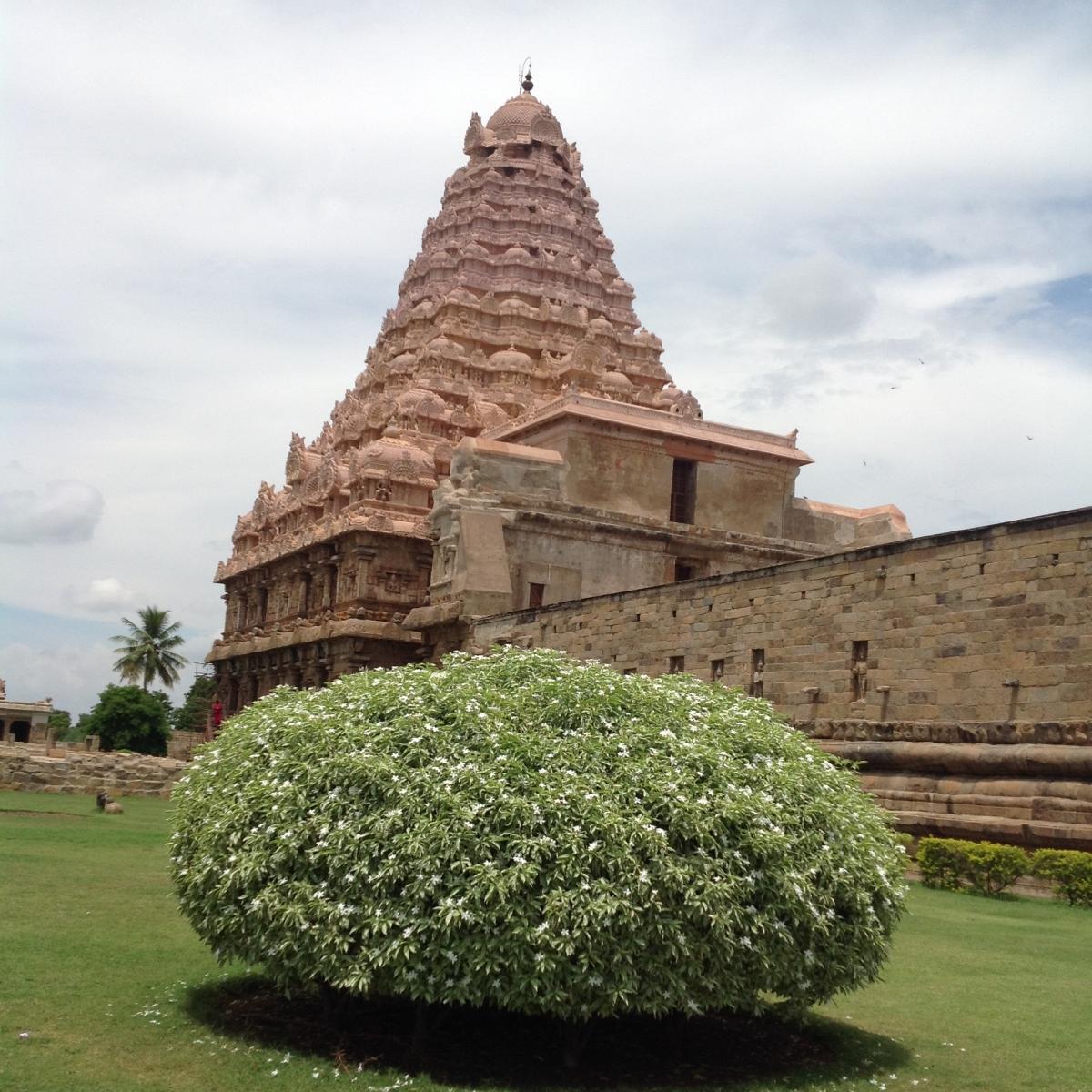 viaggio india racconti fotografie immagini (27)